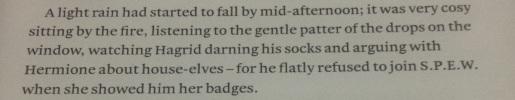 Hagrid Knits Socks!